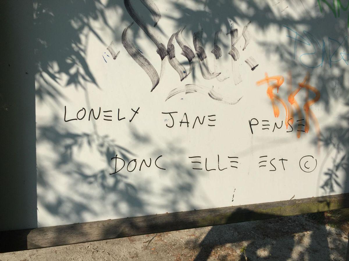 LonelyJane8